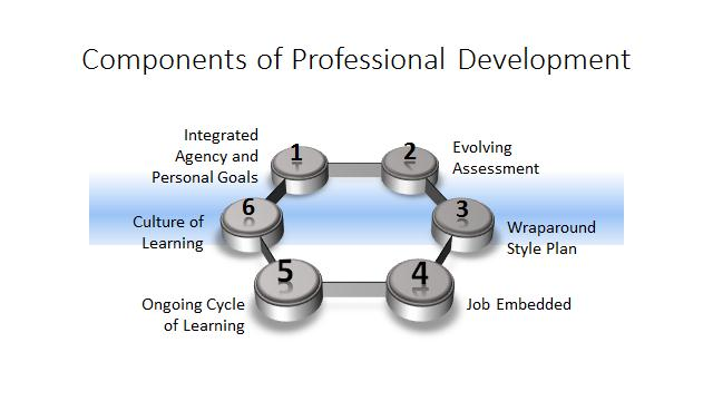 The Components Of An Effective Professional Development Process